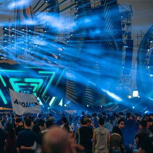 2014 Budweiser Storm Electronic Music Festival